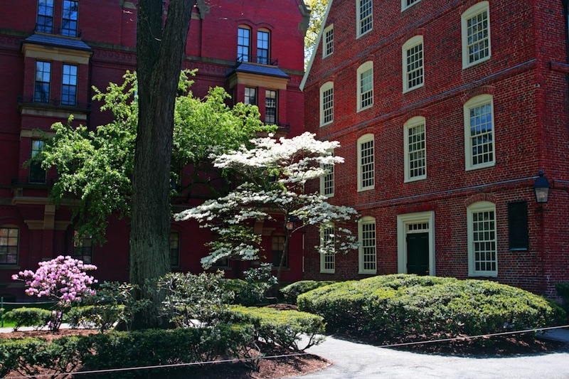 Harvard is the oldest institution of higher learning in the United States