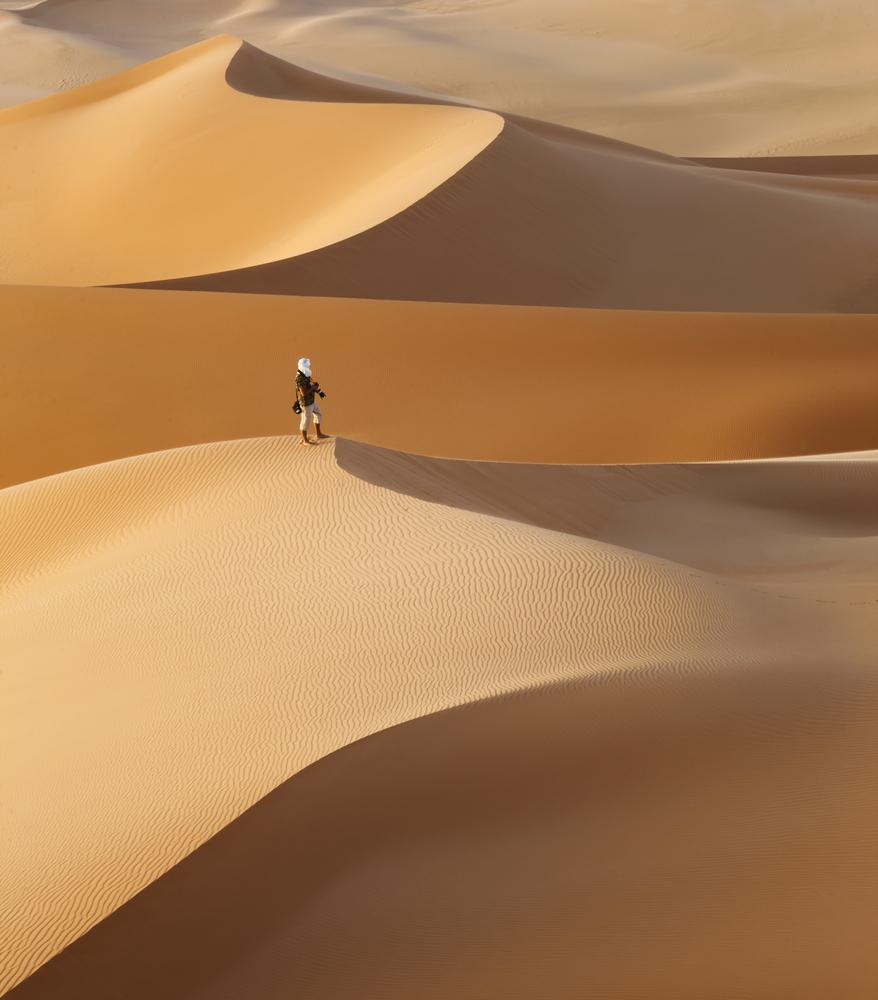Huge dunes of the desert