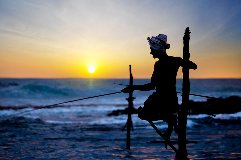 In Sri Lanka a local fisherman is fishing in unique style in the