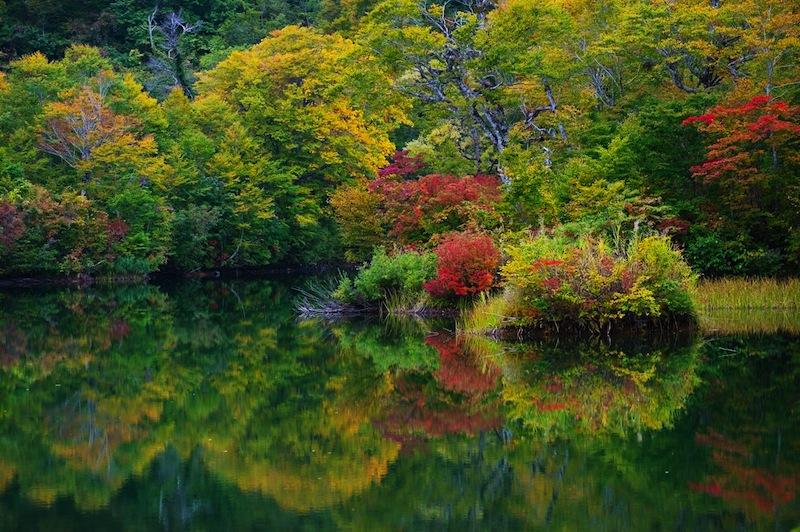 Kamaike pond Joshinetsu kogen National Park Japan