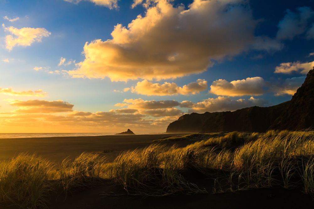 Karekare Beach Auckland Region New Zealand