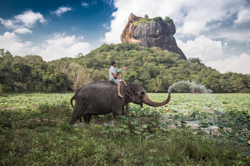 Man and child riding on the back of elephant with rock of Sigiriya as backdrop sri lanka