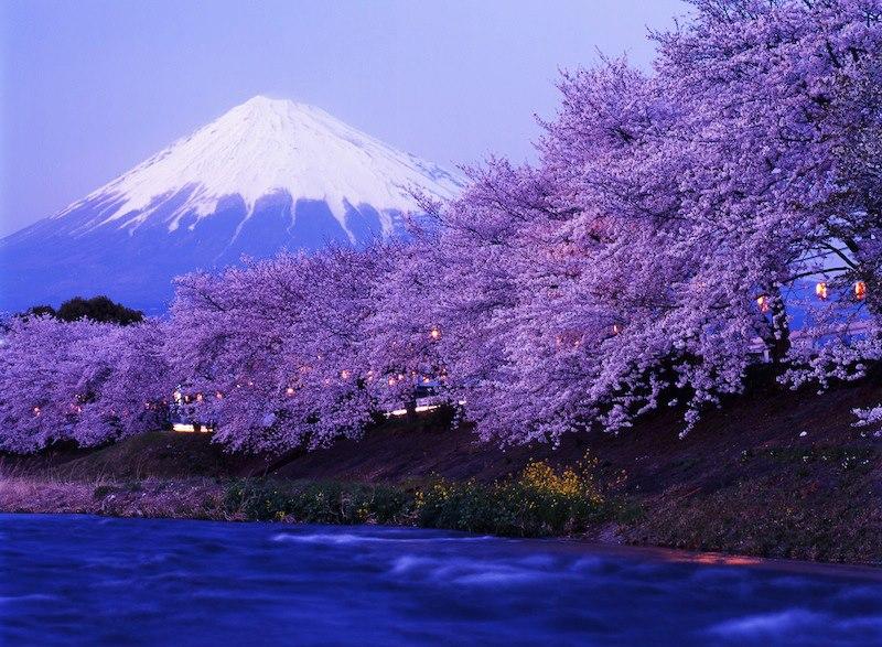 Monte Fuji Giappone_n