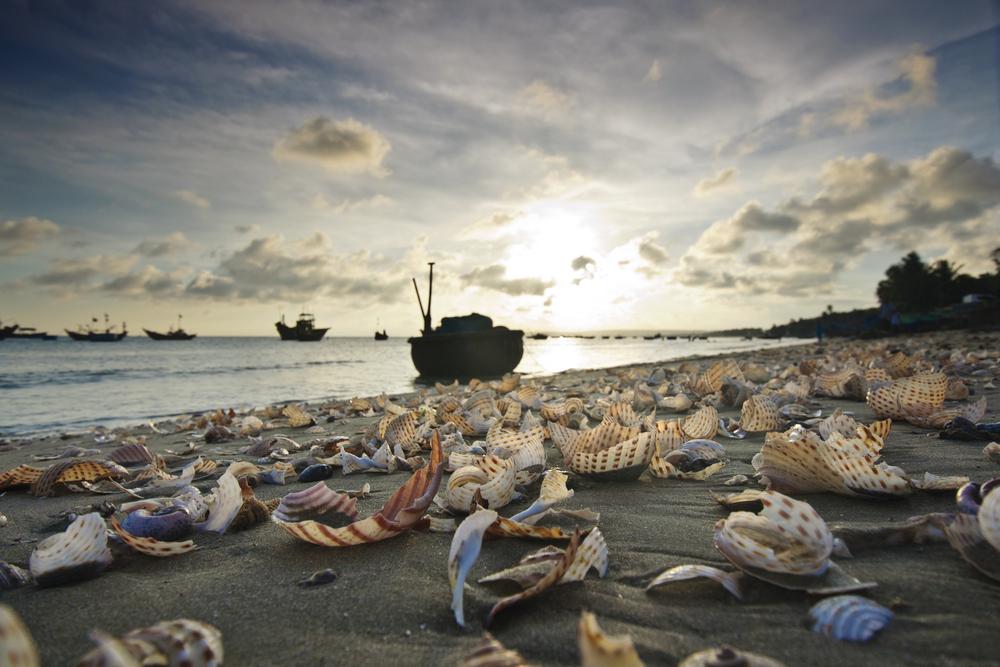 Mui Ne Beach Vietnam 9