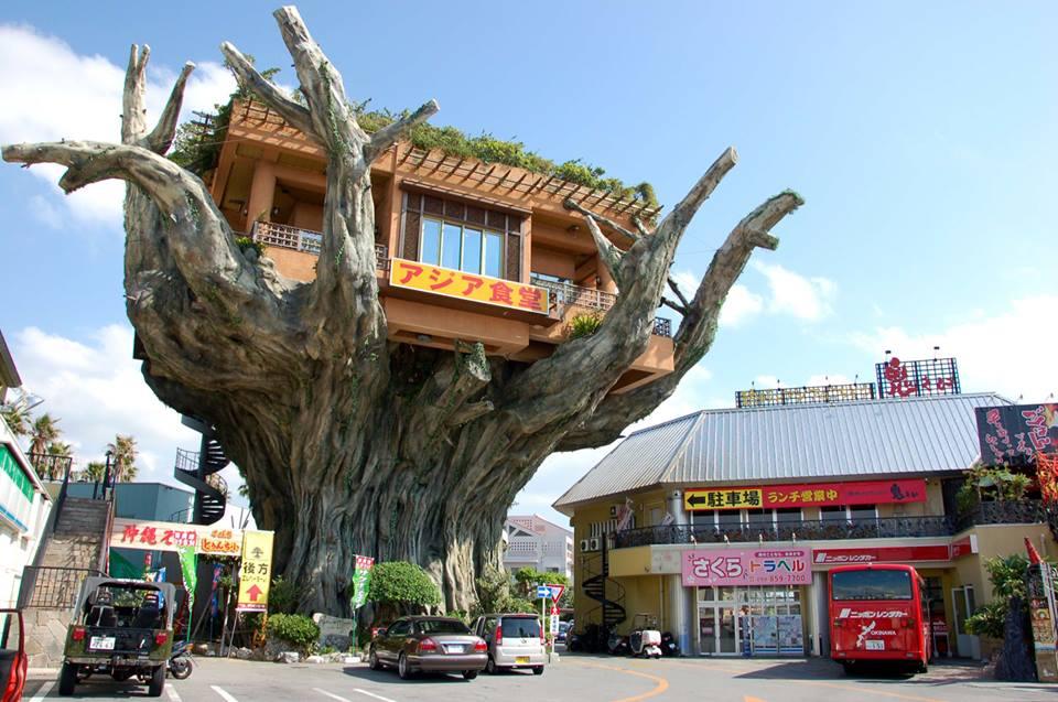 Naha Harbor Diner di Okinawa Giappone