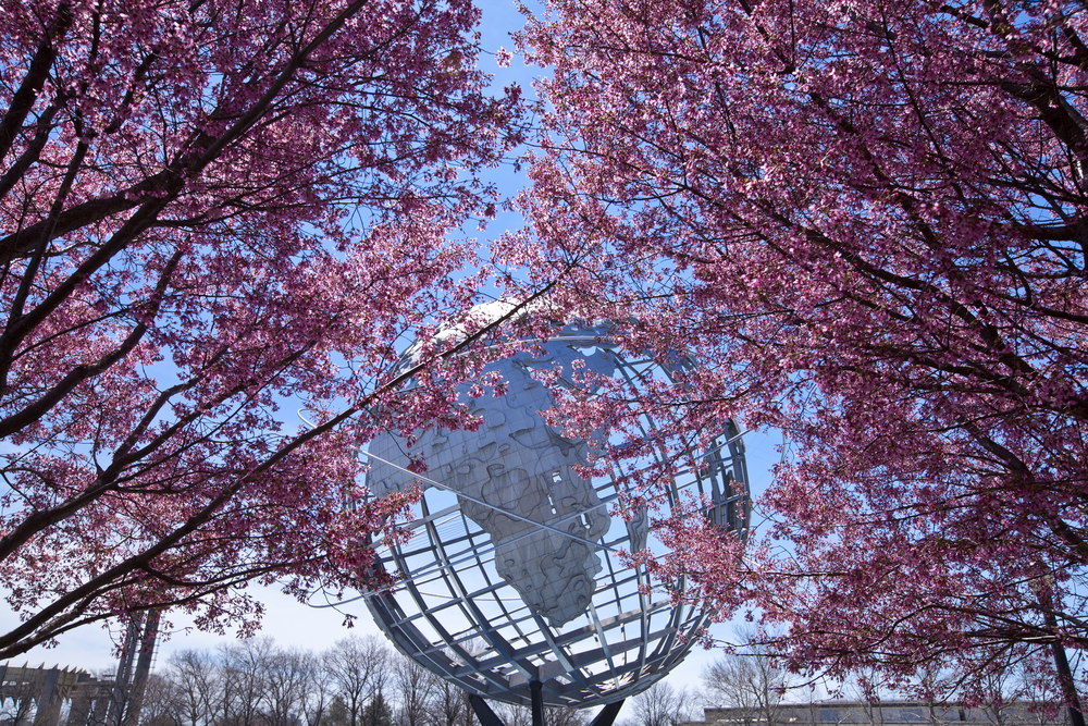 New York City USA April 20 2014 The Unisphere with cherry blossom trees in Flushing Meadows Corona Park at New York City