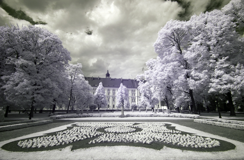 Park in 8Poznan Greater Poland Poland