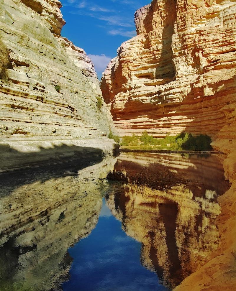 Picturesque canyon Ein Avdat in desert Negev in Israe