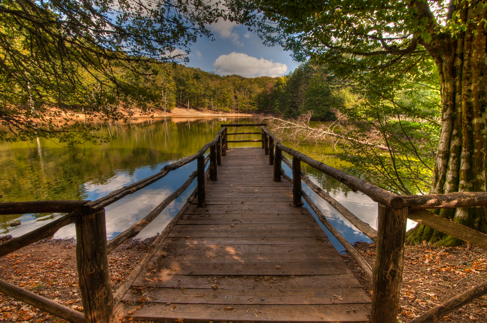 Pier over a lake in Foresta Umbra Umbra Forest in Gargano National Park Puglia Italy