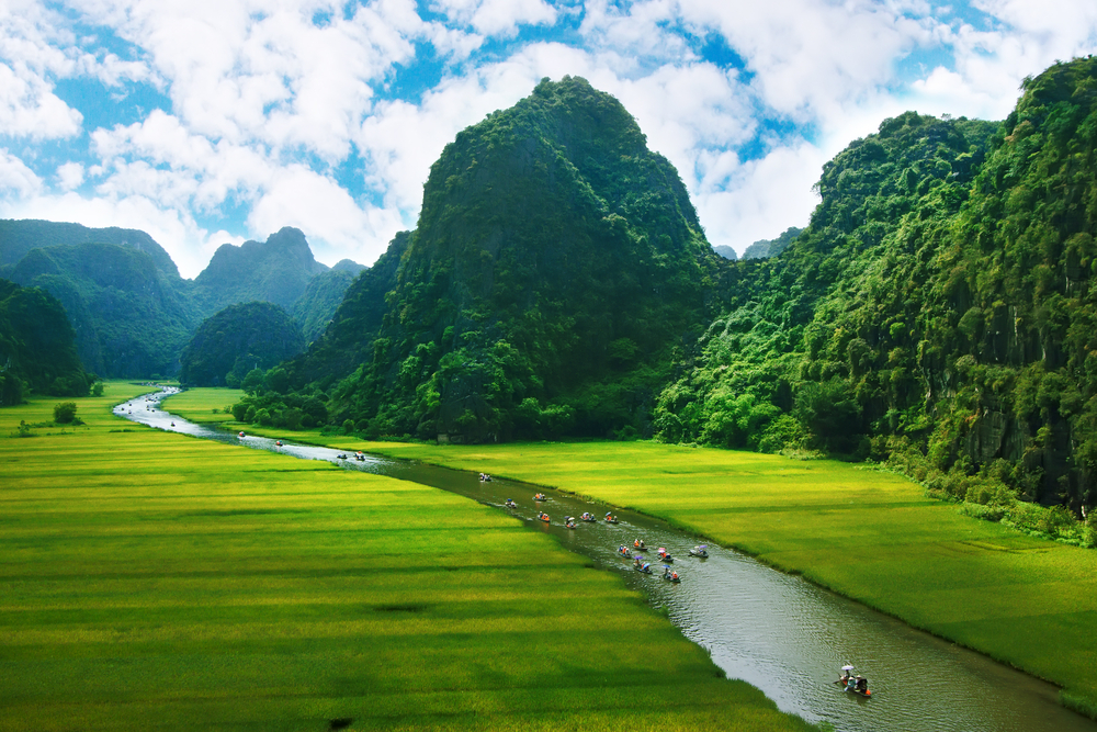 Rice field and river NinhBinh vietnam