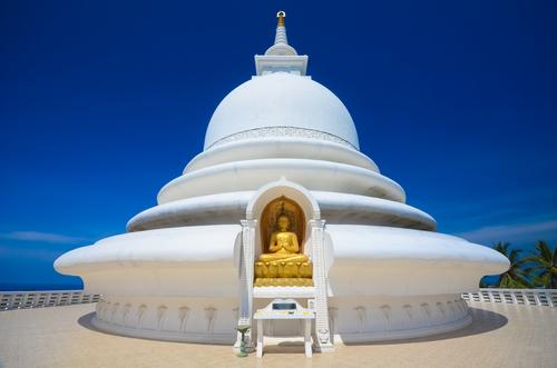 Saama dagabo Galle Sri Lanka