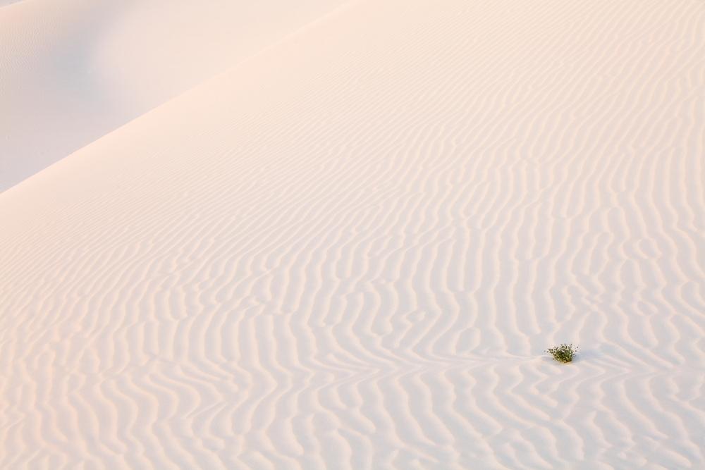 Sand desert dunes of Socotra island yemen 1