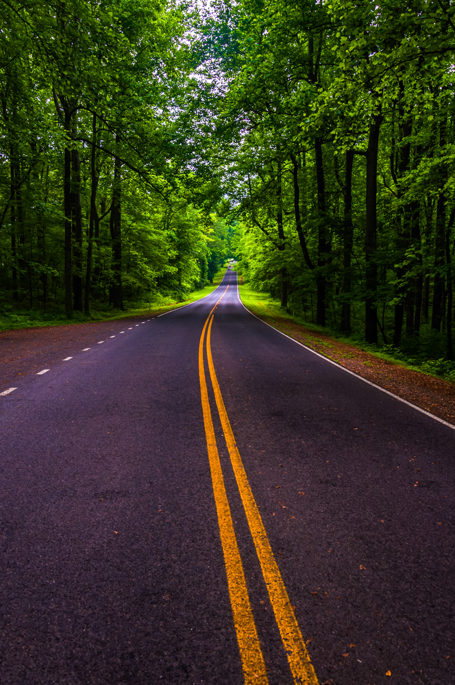 Skyline Drive in a heavily shaded forest area of Shenandoah National Park Virginia