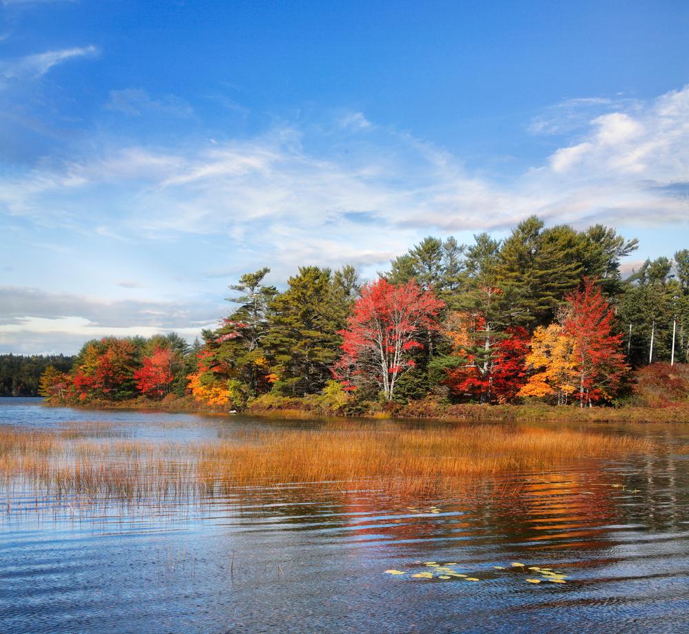 Somes Pond Mount Desert Island Acadia National Park Maine USA
