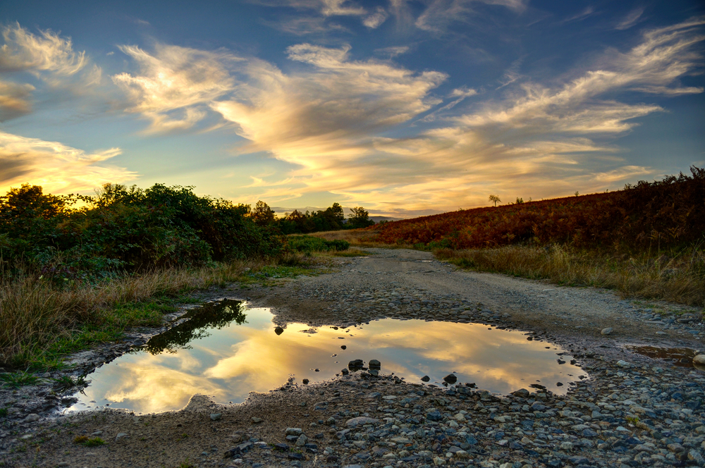 Summer sunset with clouds reflecting in puddle