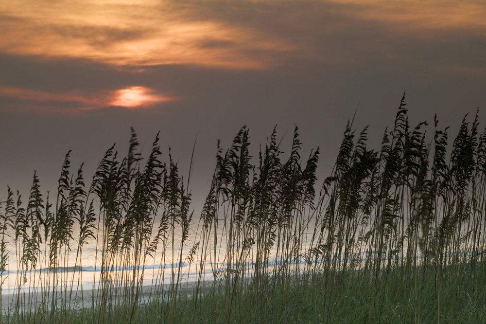Sunrise Huntington Beach State Park South Carolina USA