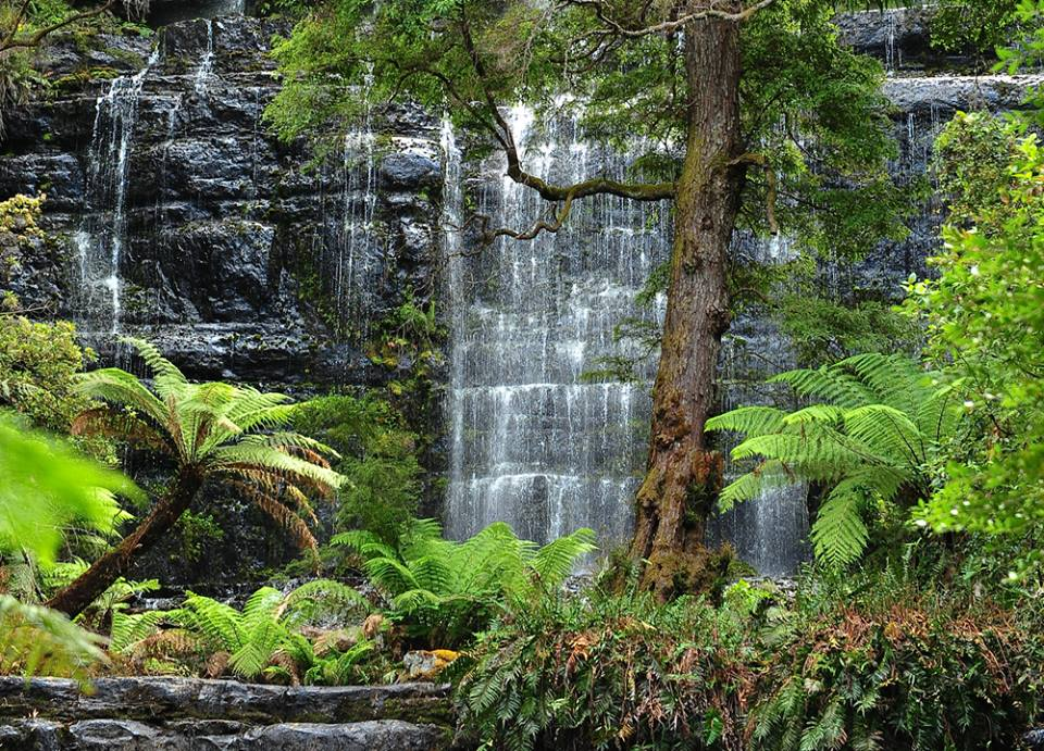 Tasmania Waterfalls