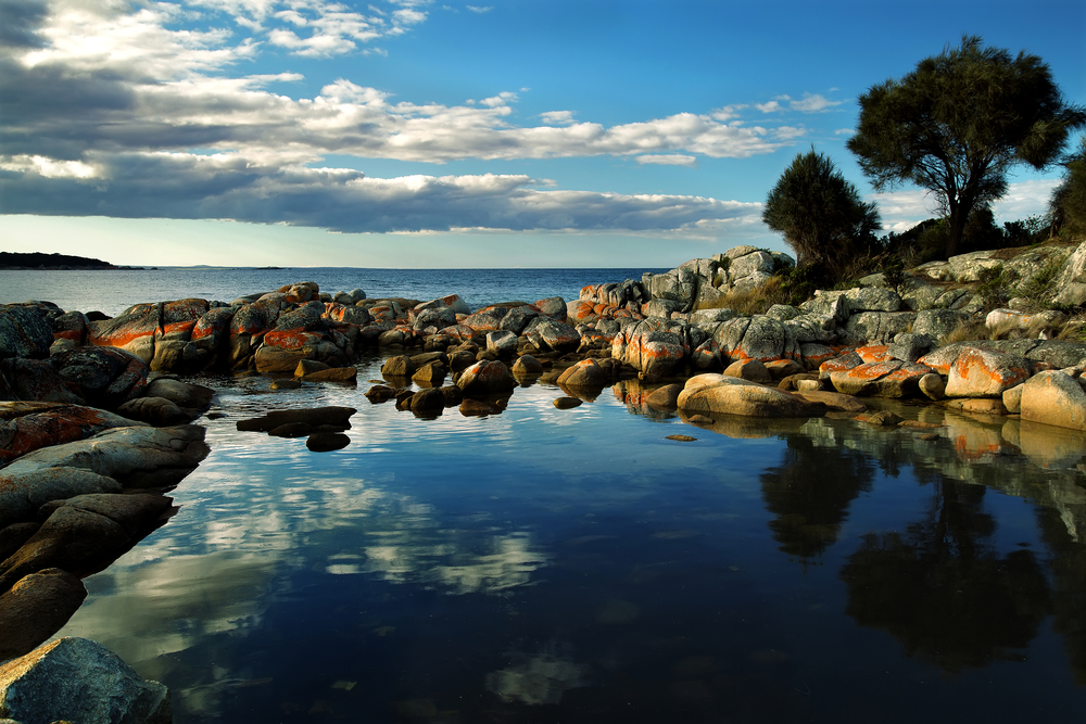 Tasmanian beach 7