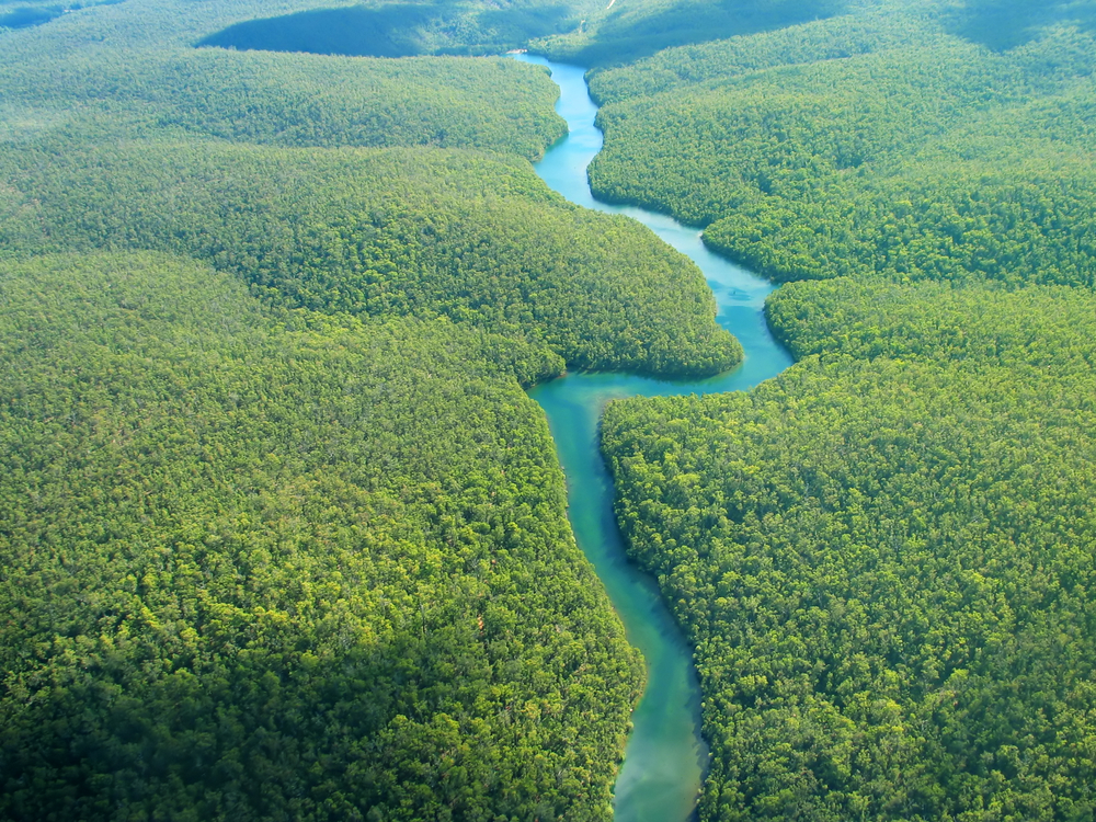The Cononaco river amazzonia venezuela