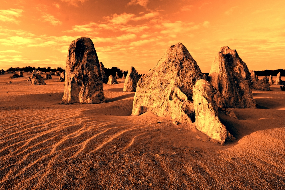 The Pinnacles Numbung National Park Western Australia