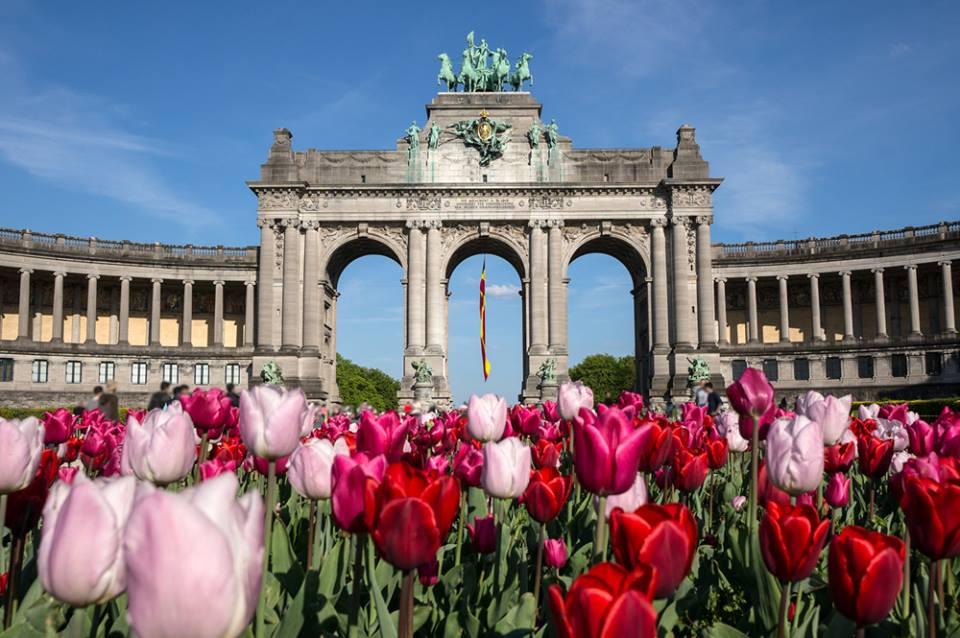 The Triumphal Arch Bruxelles