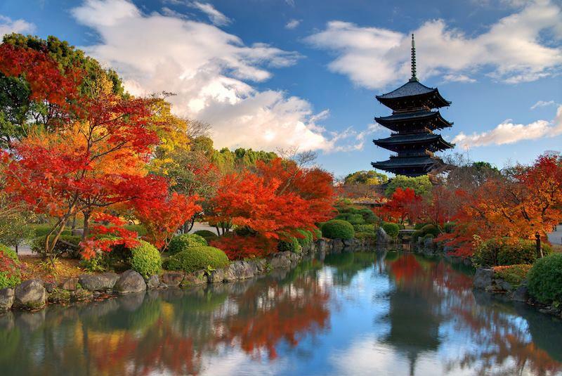 To Ji Temple Nara Japan