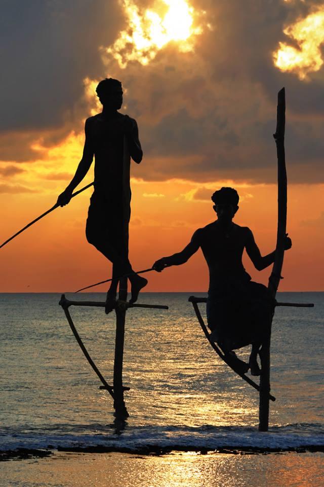 Traditional stick fishermen Sri Lanka