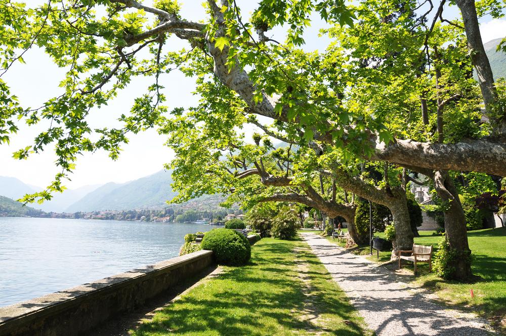 Tremezzo town at the famous Italian lake Como 8