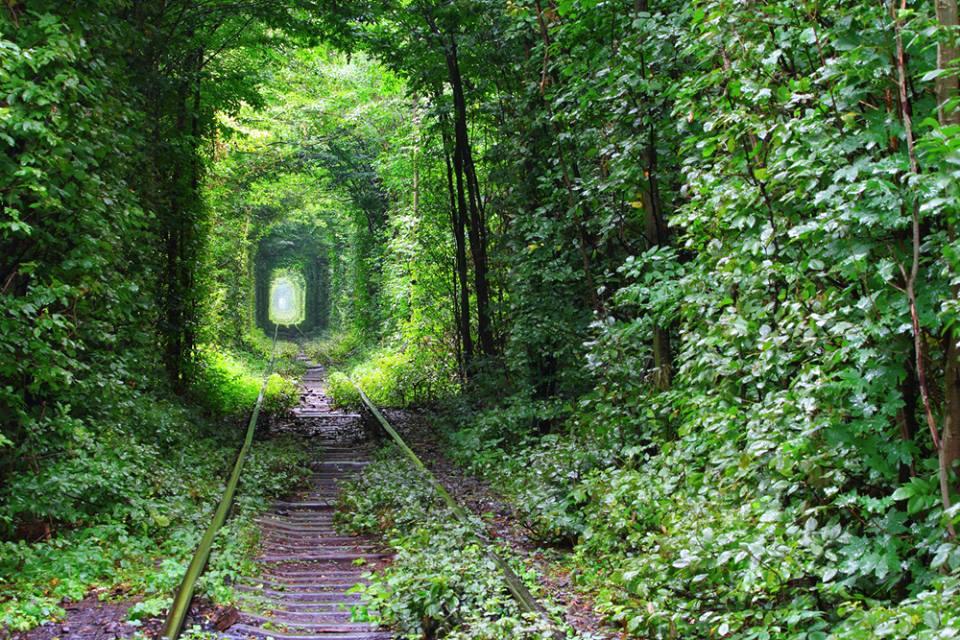 Tunnel of Love in Kleven Ukraine
