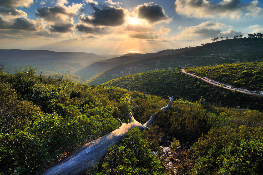View from a mountain in Israel