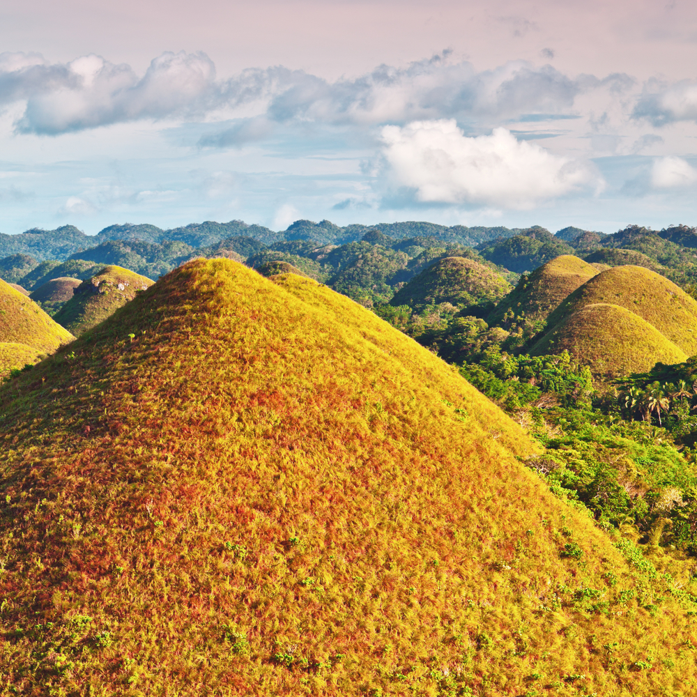 View of The Chocolate Hills