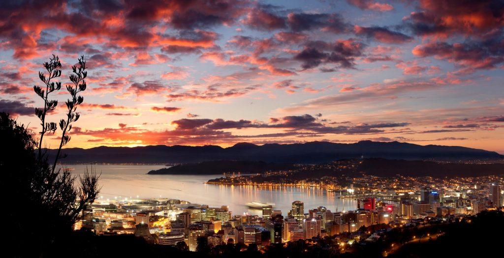 Wellington CBD at night