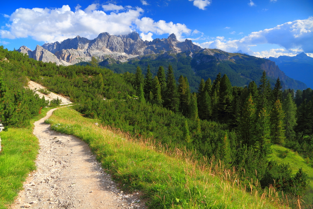 Wide trail near green meadow and distant mountains Dolomite Alps Italy