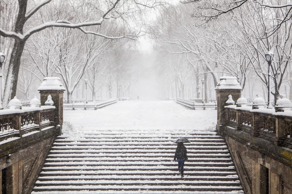Winter in New York 6