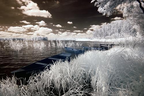 Wolsztyn Lake in Greater Poland Poland