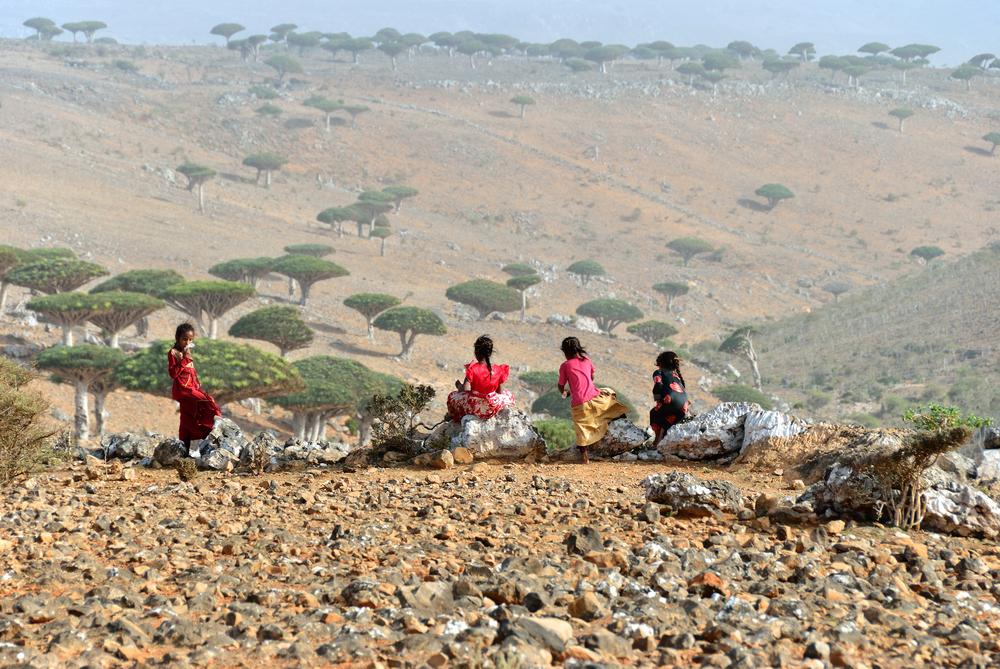 YEMEN MAR 8 2010 Unidentified children shown at Socotra island
