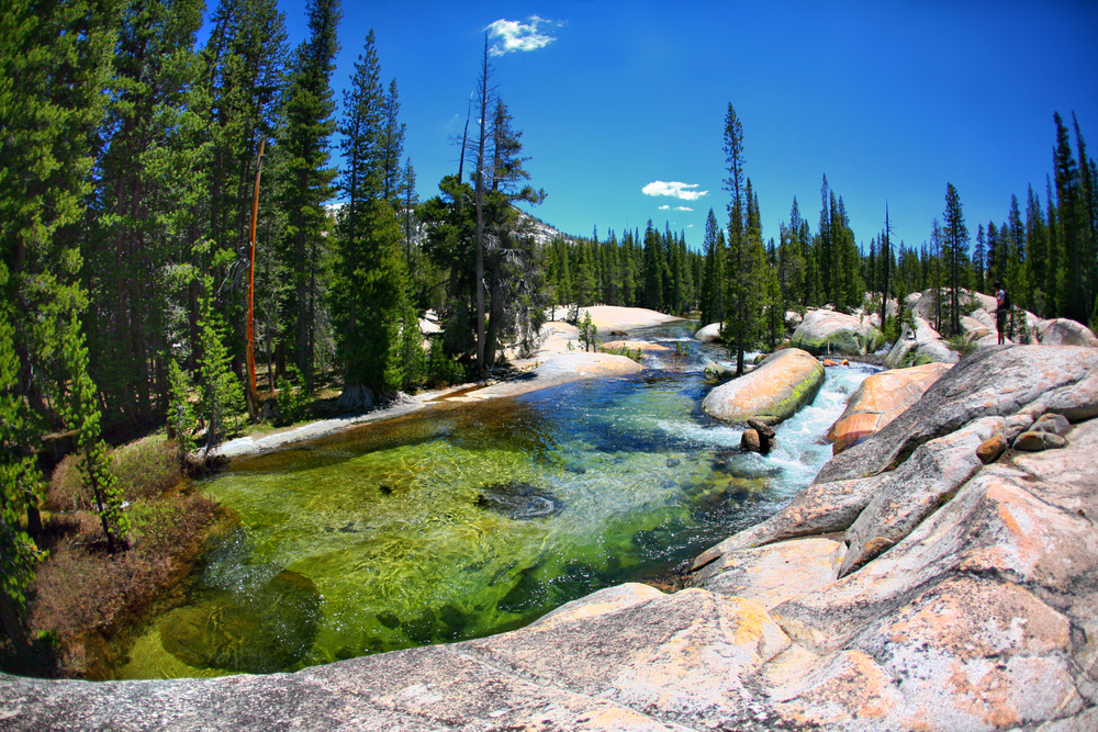 Yosemite National Park in California 9