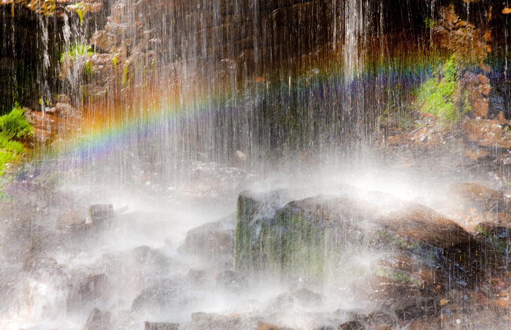arcobaleno piggia