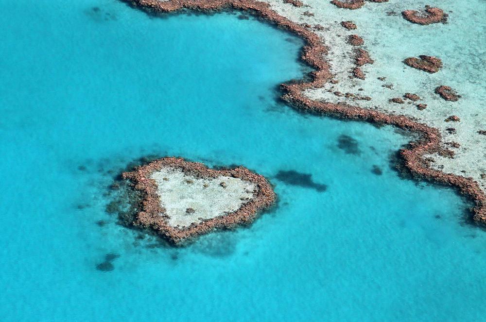 australia cuore8
