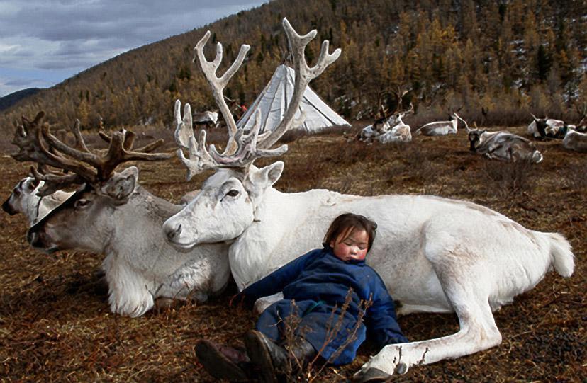 bambina dorme renna