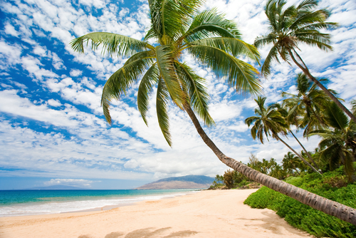 beautiful maui beach