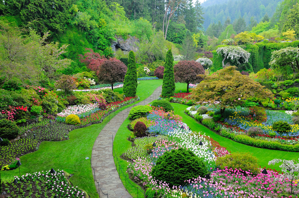 butchart garden in spring victoria british columbia canada