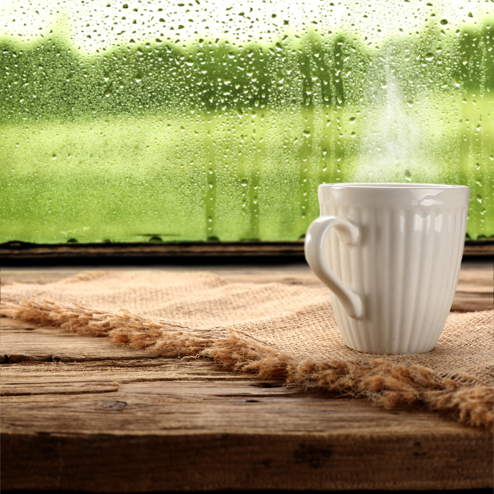 caffe finesrta