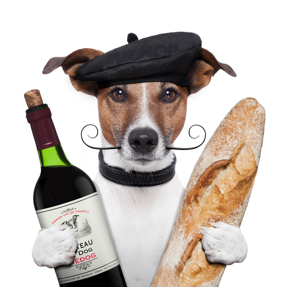 cane francese
