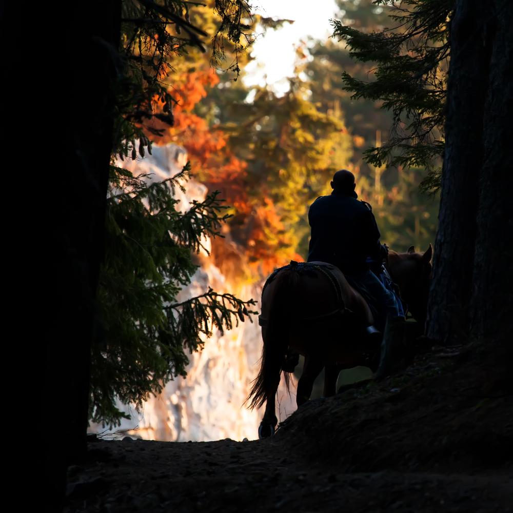 cavallo costa rica