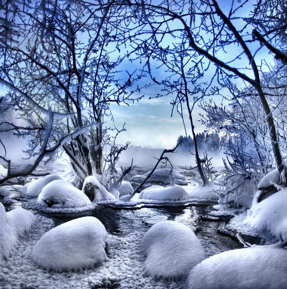 copertina neve