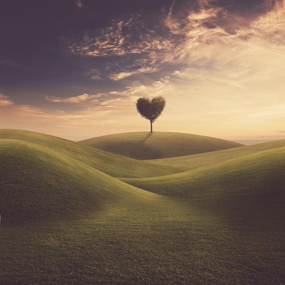 cuore capanna2