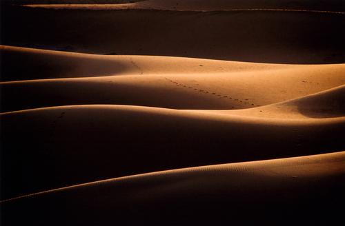 desert carovana