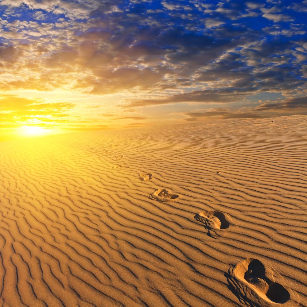 deserto egitto