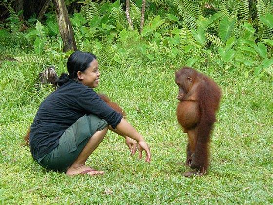 donna e scimmia